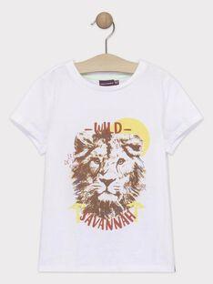 T-shirt de mangas curtas cru menino TYPOLAGE / 20E3PGM1TMC000